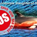 The Indiscriminate Slaughter Of Dolphins On Our Doorstep
