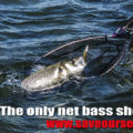 Letter To George Eustice MP - Fishing Opportunities 2017, Bass Stocks