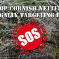 Stop Cornish Netters Illegally Targeting Bass